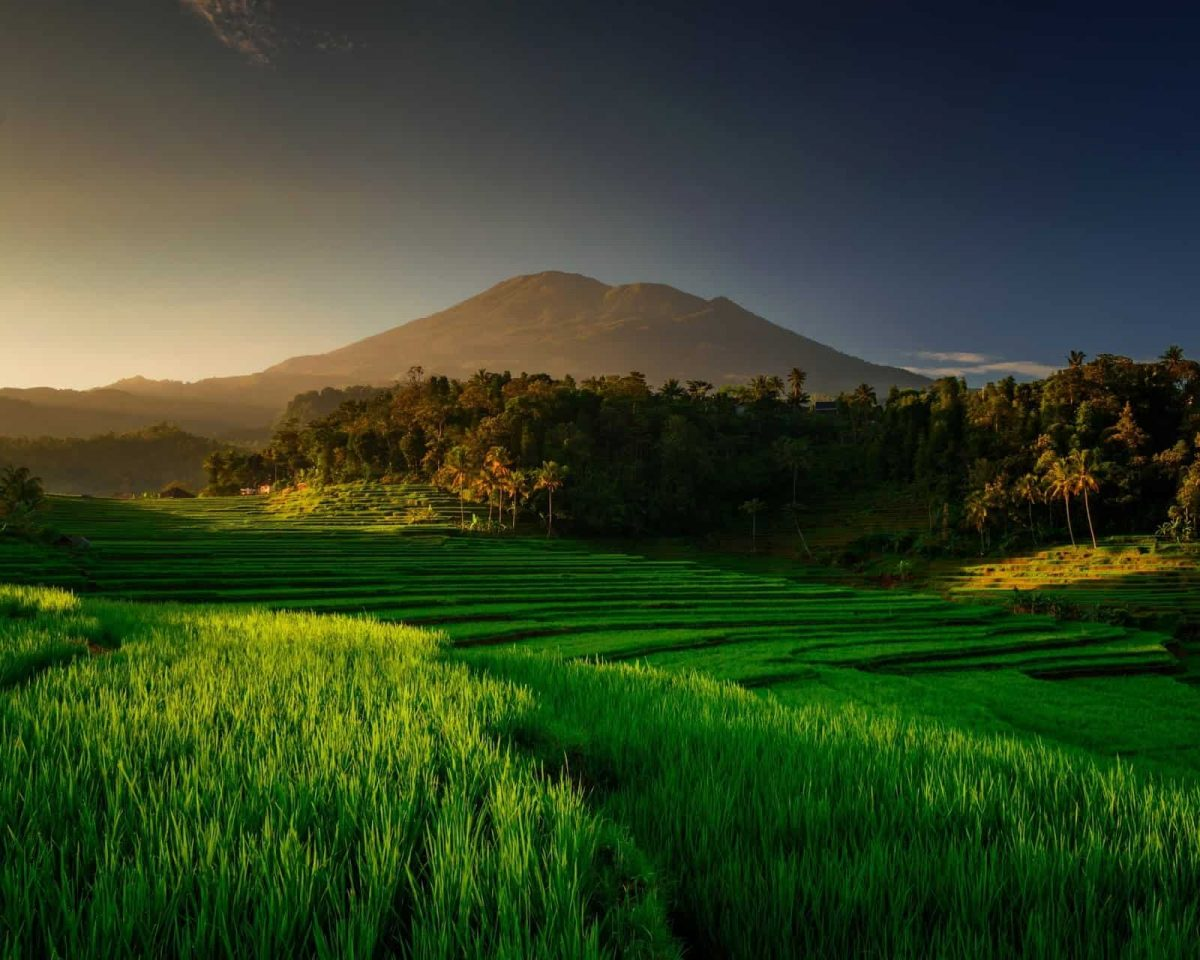 Desa Panca Mulya